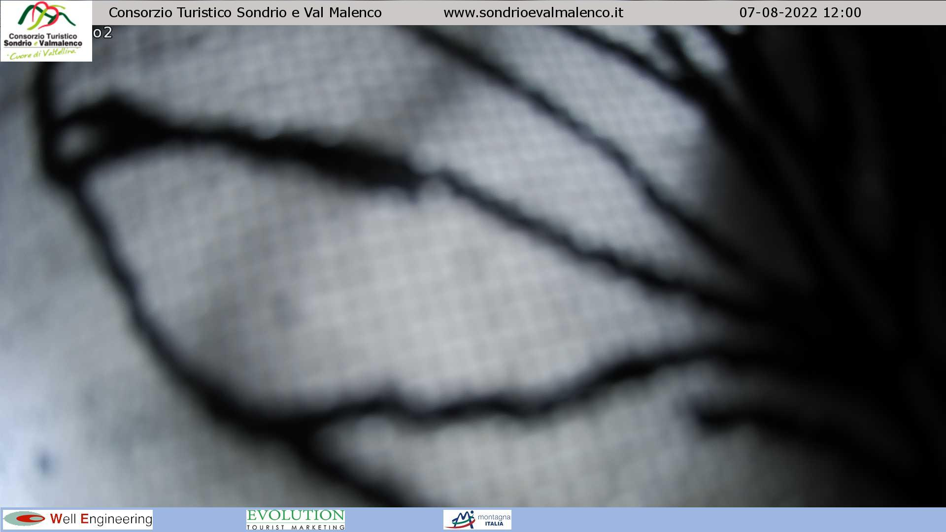 Webcam di Palù - Cima Motta (mt.2337)